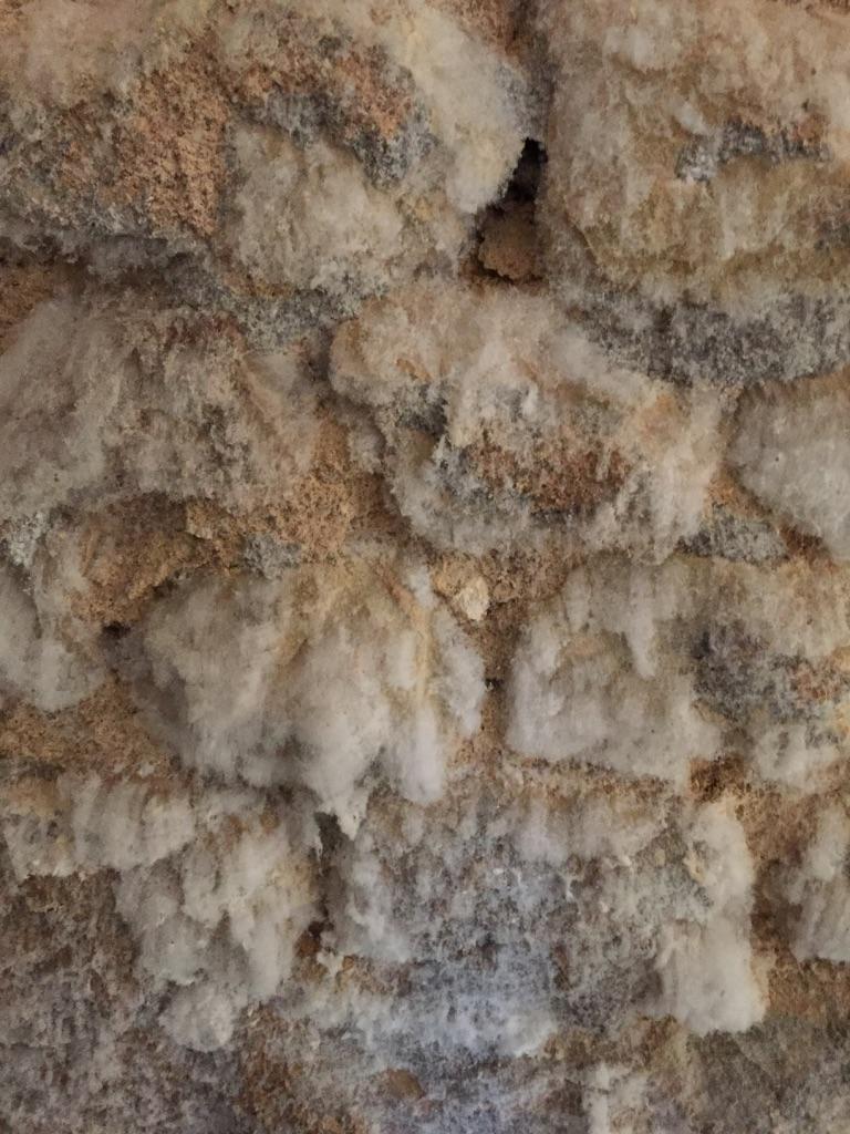 Humidite Mur Pierre Interieur salpêtre traitement des remontées capillaires - entreprise