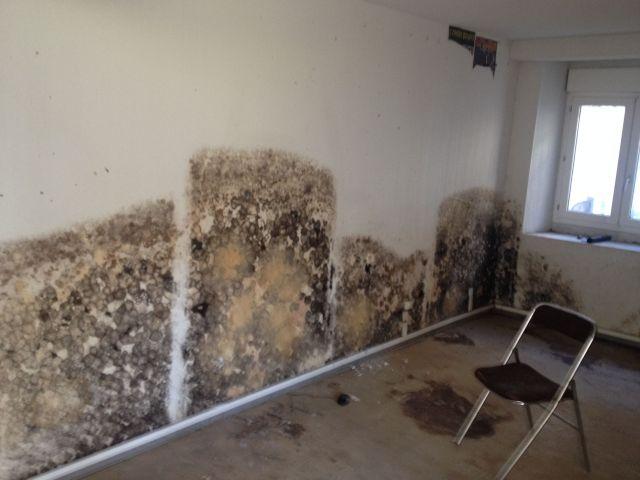 moisissure mur lyon entreprise pour traitement de l. Black Bedroom Furniture Sets. Home Design Ideas